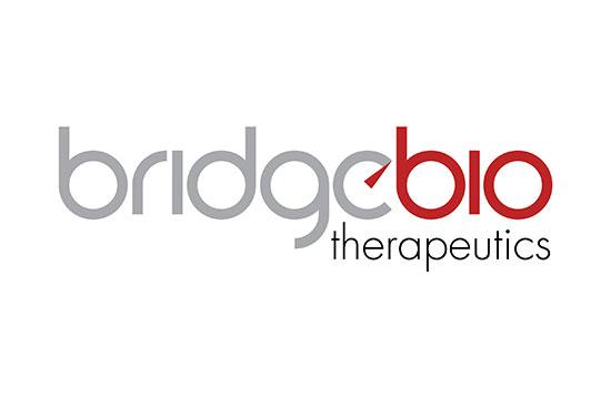 Bridgebio therapeutics logo